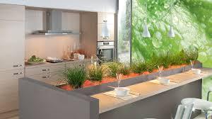 plante pour cuisine cuisine le plan de travail joue avec les objets déco