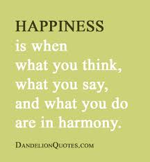happiness is when what you think what you say all inspiration quotes