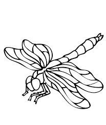 dragonfly colouring pictures simple dragonfly animal coloring