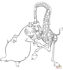 gloria and melman coloring page free printable coloring pages