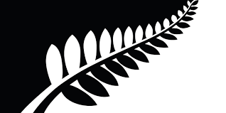 Red White Black Flag New Zealand U0027s New Flag Might Be Silver Fern Red White And Blue