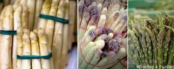 comment cuisiner des asperges blanches asperges comment les choisir comment les cuire