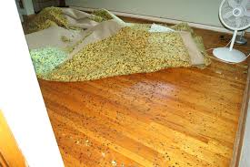 Underpad For Area Rug Carpet Pad Area Rug How To Install Padding Apartment Therapy