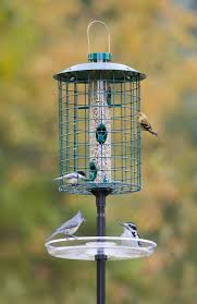 95 best feeders images on pinterest bird feeders for the birds
