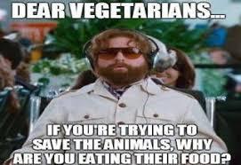 Vegan Meme - brace yourself anti vegan memes are coming gallery ebaum s world