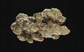 new wedding cake strain genetics cannabis cup top indica