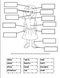 label the parts of body worksheet for grade 1 about form with