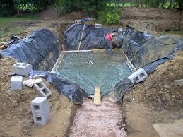 Natural Swimming Pool Natural Swimming Pools Warwickshire Swimming Pond Design