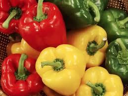 comment cuisiner les poivrons rouges comment cuisiner des poivrons cuisine actuelle