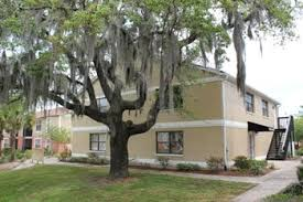 3 Bedroom Apartments Tampa by 1 Bedroom Apartments For Rent In Tampa Fl 261 Rentals U2013 Rentcafé