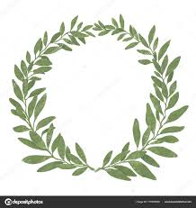 bay leaf wreath bay leaf wreath isolated on white background pastel t