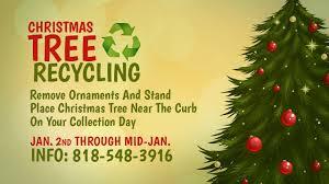 christmas tree recycling program youtube
