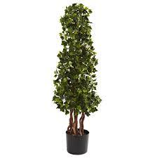 spiral tree in pot reviews joss