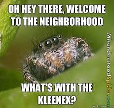Spider Meme Misunderstood Spider Meme - the best of the misunderstood spider meme 19 pics pophangover