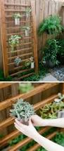 How To Make A Succulent Wall Garden by Creative Indoor And Outdoor Succulent Garden Ideas 2017