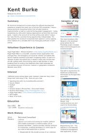 Software Developer Resume Examples by Solution Architect Resume Samples Visualcv Resume Samples Database
