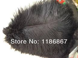 Ostrich Feather Centerpieces Wholesale by Compare Prices On Ostrich Plume Centerpieces Online Shopping Buy