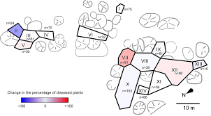 isolating fungal pathogens from a dynamic disease outbreak in a