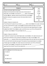 homework review worksheet middle and high biology