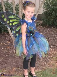 Fairy Costumes Fairy Costume