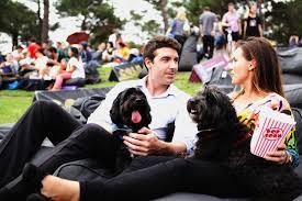 Outdoor Cinema Botanical Gardens A True Blue Screening At Moonlight Cinema This Australia Day