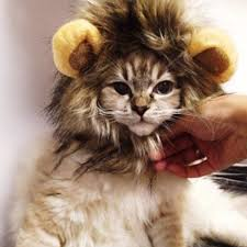 Dog Halloween Costume Lion Mane Popular Lion Ears Costume Buy Cheap Lion Ears Costume Lots