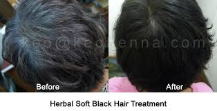 african american henna hair dye for gray hair henna hair dye natural black hair makedes com