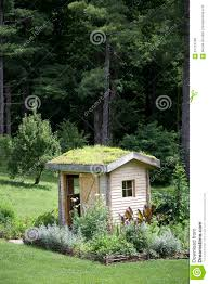 potting shed with roof garden stock photo image 57724788
