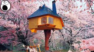 20 coolest treehouses in the world youtube