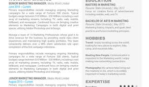 100 Entrepreneur Resume Template Homely by Interesting Snapshot Of Basic Resume Template 2017 Near How To