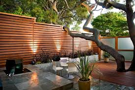 Patio Around Tree Patio Contemporary Patio San Francisco By Ods Architecture
