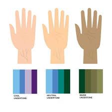 Best Neutral Colors 1088 Best Color Analysis Images On Pinterest Colors Clear