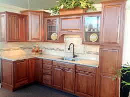 Beautiful Waypoint Cabinets Trend Richmond Traditional Kitchen - Kitchen cabinets richmond