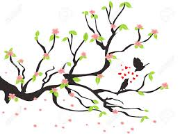 cherry blossom clipart bird pencil and in color cherry