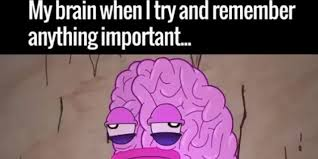 Brain Meme - 30 memes that describe what chemo brain feels like the mighty