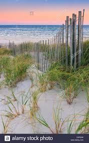 sunrise dune grass stock photos u0026 sunrise dune grass stock images