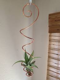 hanging air plant air plant holder hanging air plant holder air plant