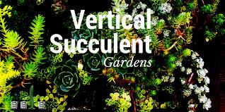 vertical succulent gardens the urban vertical farming project