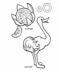 an ostrich and an orange coloring page color luna