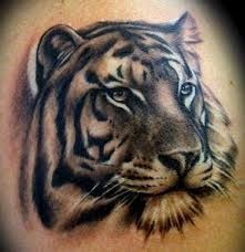 siberian tiger tattoo tiger tattoo designs ideas and meanings