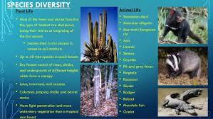 Tropical Savanna Dominant Plants - tropical seasonal forests