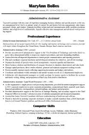 Resume Summary Statement Examples 24 Cover Letter Template For Professional Summary On Resume