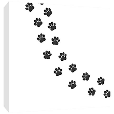 trail paw prints 16