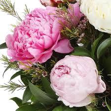 peonies flower delivery peonies flower delivery nyc plantshed