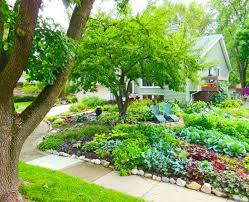 front yard veggie gardening north bank now