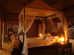 bedroom appealing cool safari theme bedroom decorating ideas