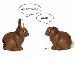 easter chocolate bunny chocolate easter bunny with no ears and search