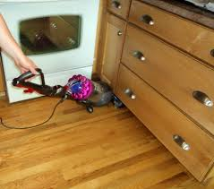 Dyson Vacuum For Hardwood Floors Dyson Dc65 Animal Complete Put To The Test