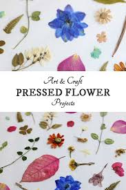 pressed flowers 25 pressed flower craft projects empress of dirt