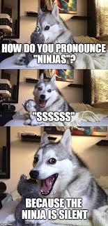 Ninja Meme - bad pun dog meme imgflip